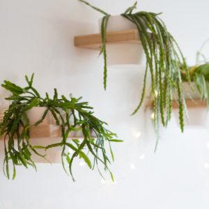 Eiken plantenpot houder